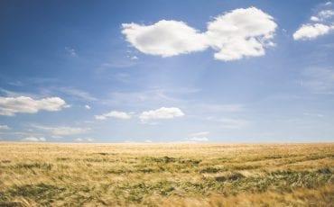 La tecnología: el aliado de los agricultores ante los cambios climáticos