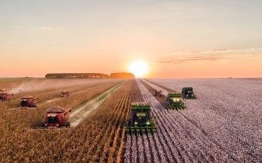 La industria agroalimentaria: El motor agrario
