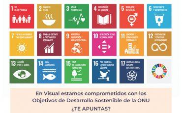 objetivos desarrollo sostenible visual